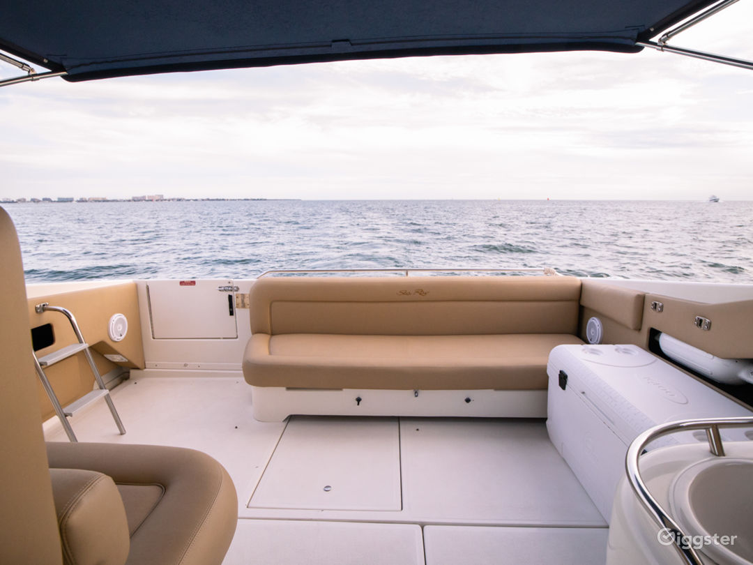 Stylish 40ft Sea Ray Party Yacht Space Events Photo 1