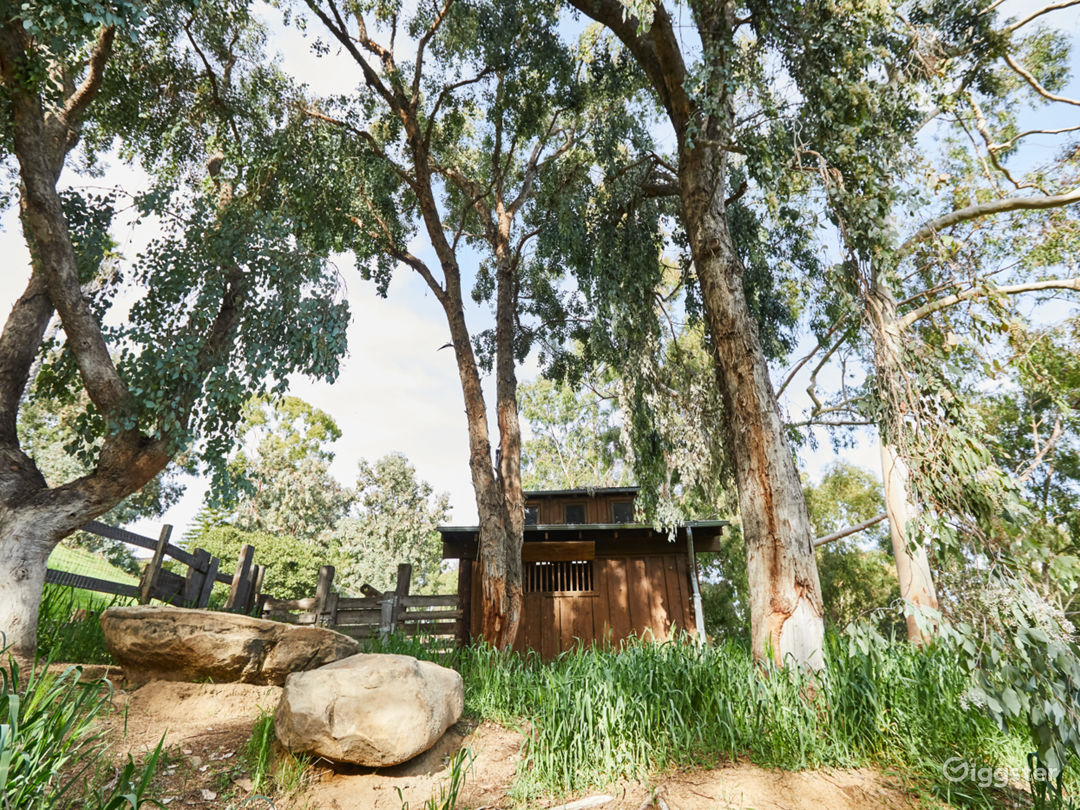 Topanga Compound | Brown Barn Photo 5