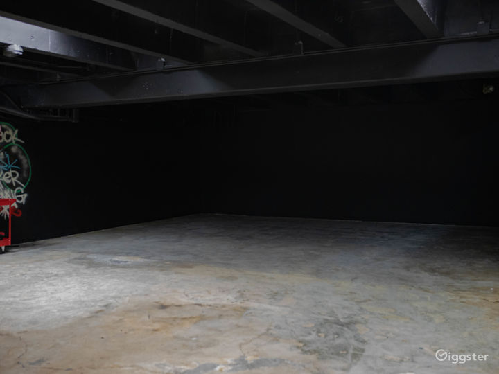 Our large empty space. Without tube lights and wet down.