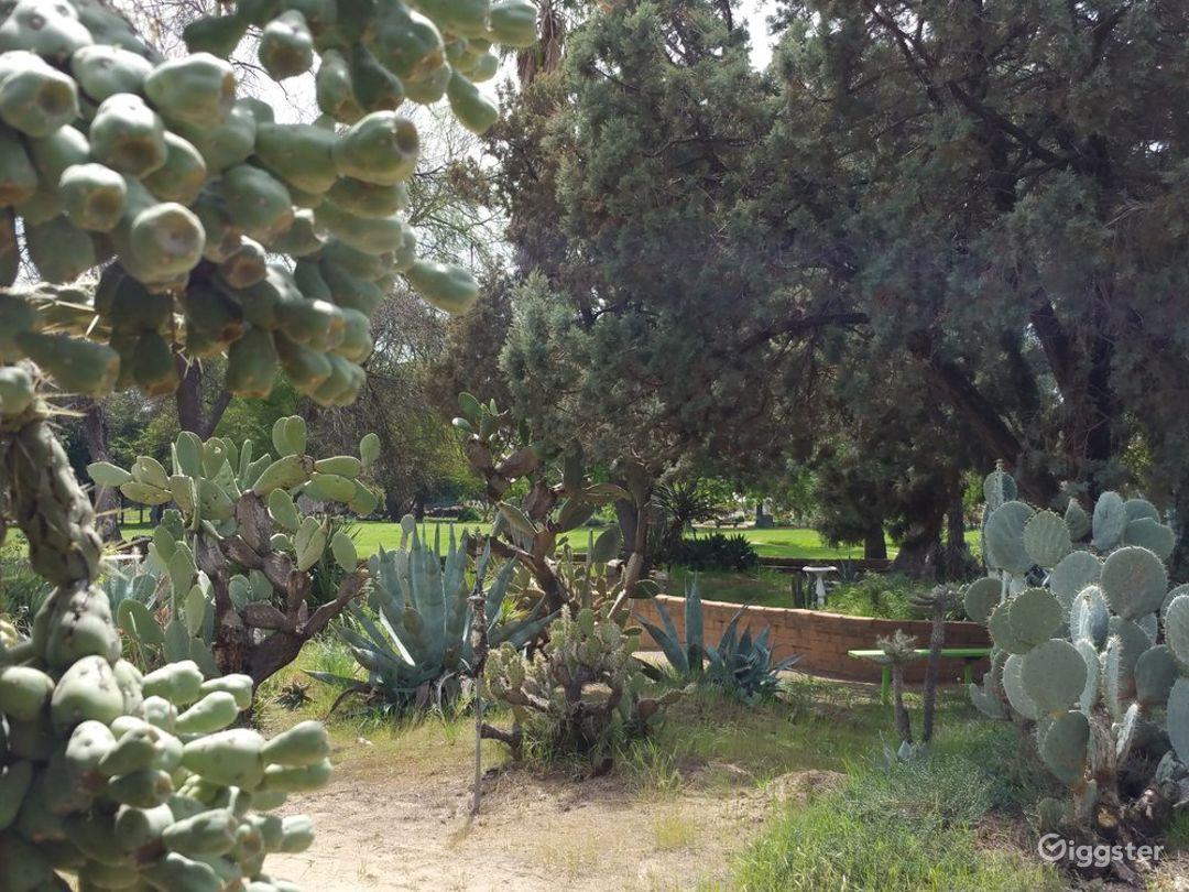 Deutsch Cactus Garden in Fresno Photo 1