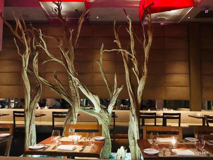 Modern and Innovative Steakhouse Photo 5