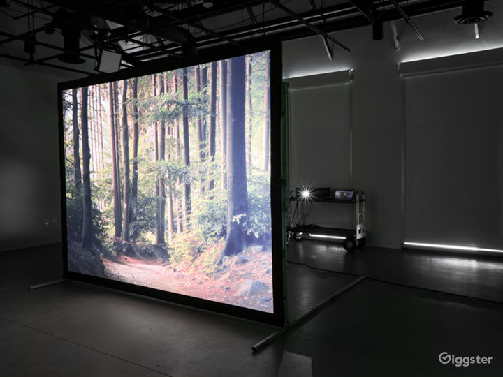 Rear projection system available for productions