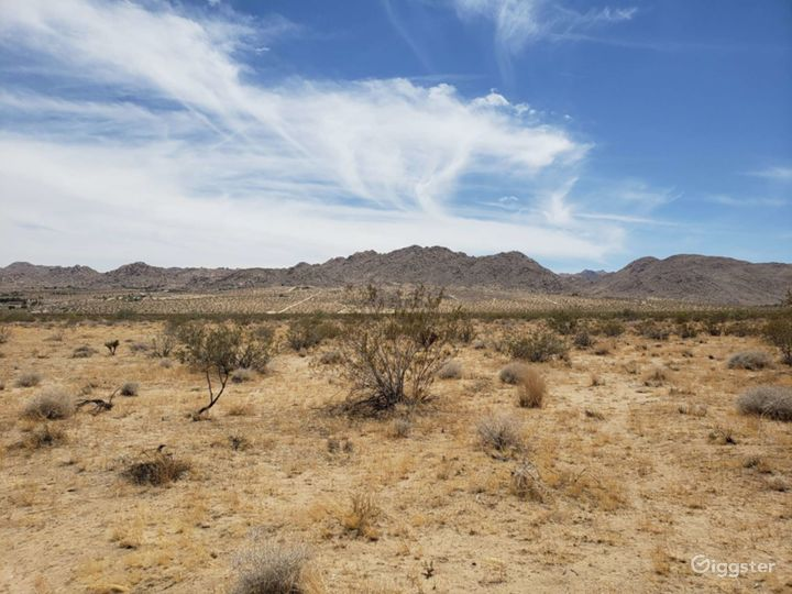 Joshua tree, 27 acre of view in  central location