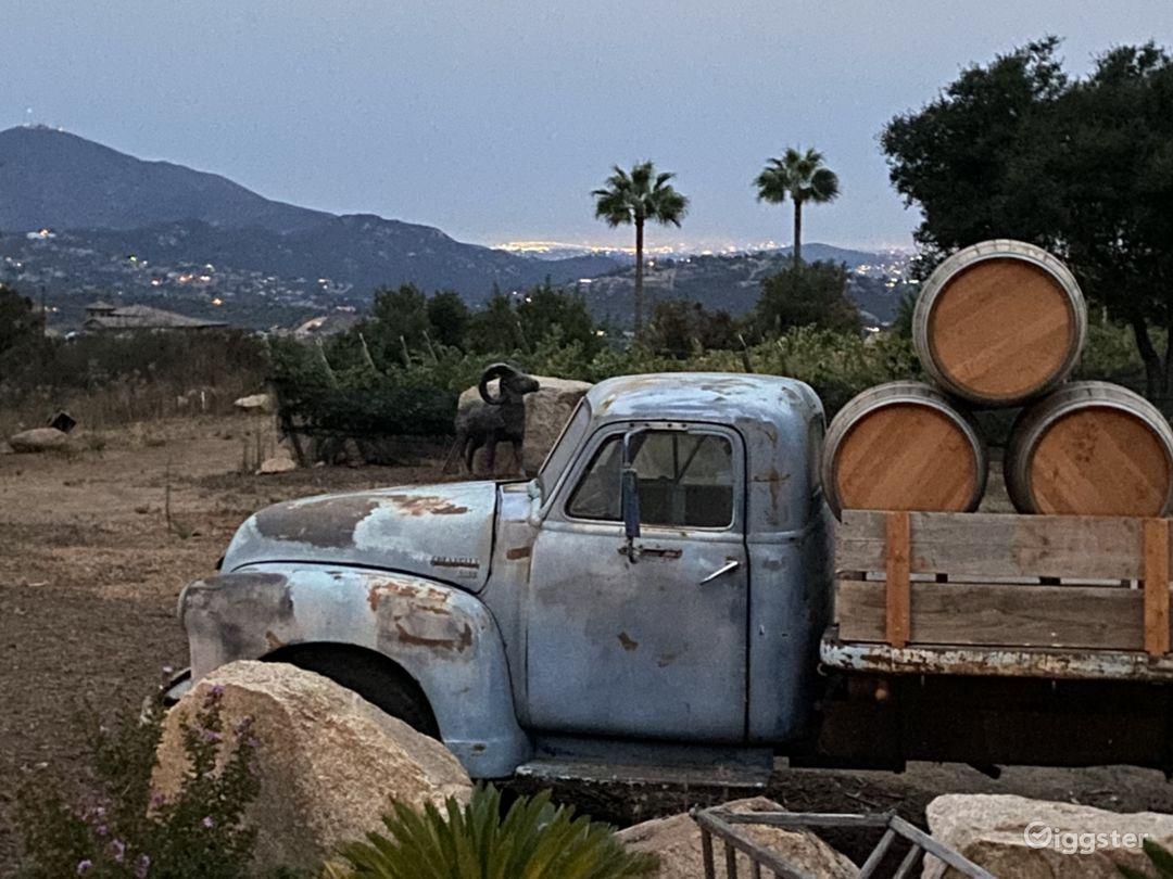 Winery and Vineyard Photo 1