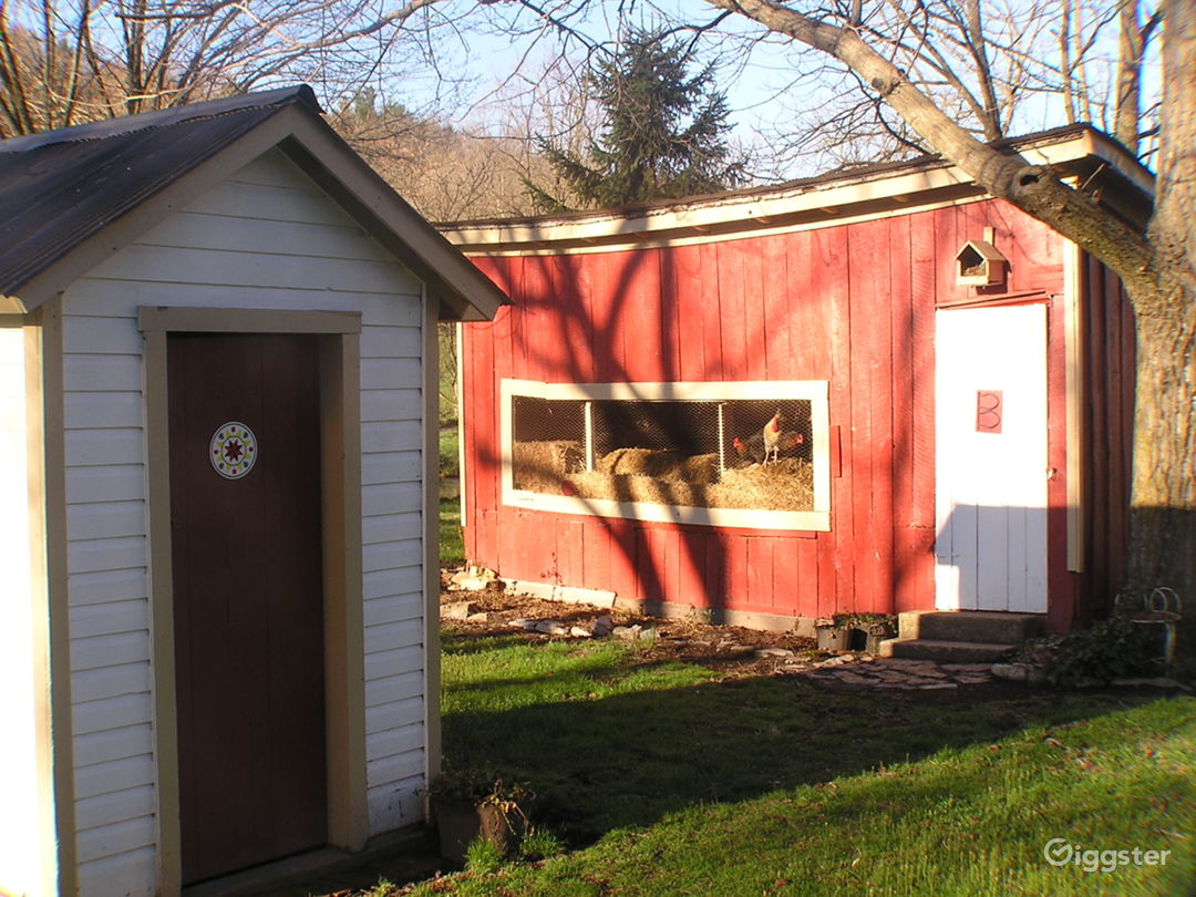 out house and chicken coop