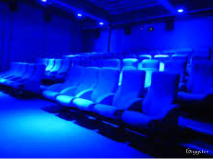 Marvelous Private Cinema in London with up to 80 guests capacity Photo 4
