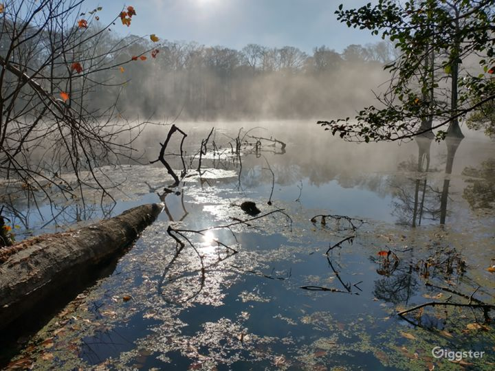 A rustic haven in Williamsburg, Virginia Photo 5