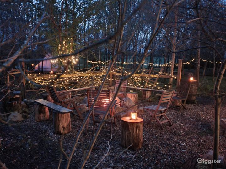 The fire pit area facing surrounded by our English oak trees.
