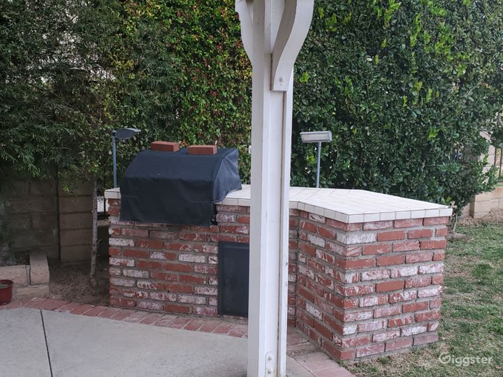 Film location: Backyard- brick grill is in filming area adjacent to grass.