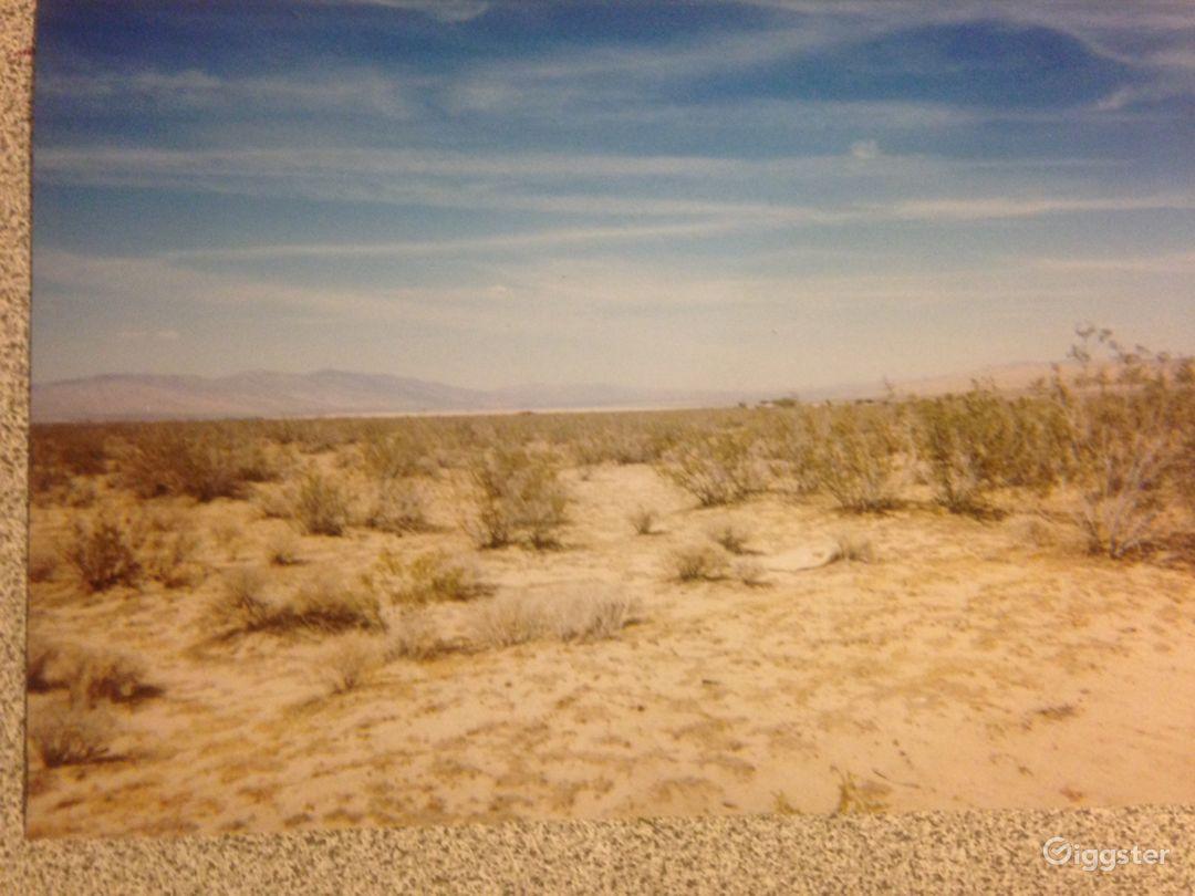 Desolate Desert Photo 1