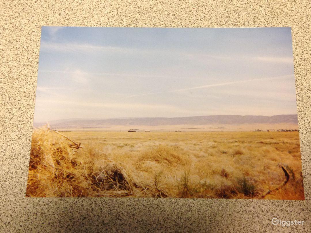 Desolate Desert Photo 4