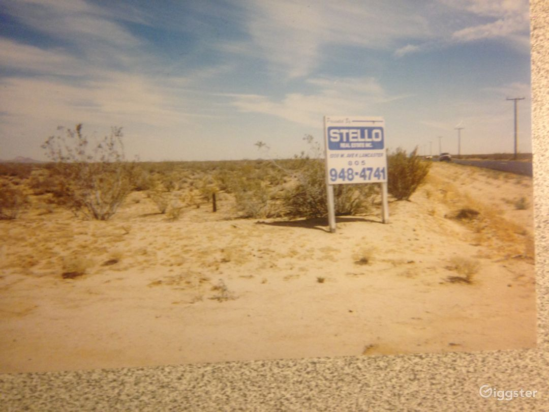 Desolate Desert Photo 3