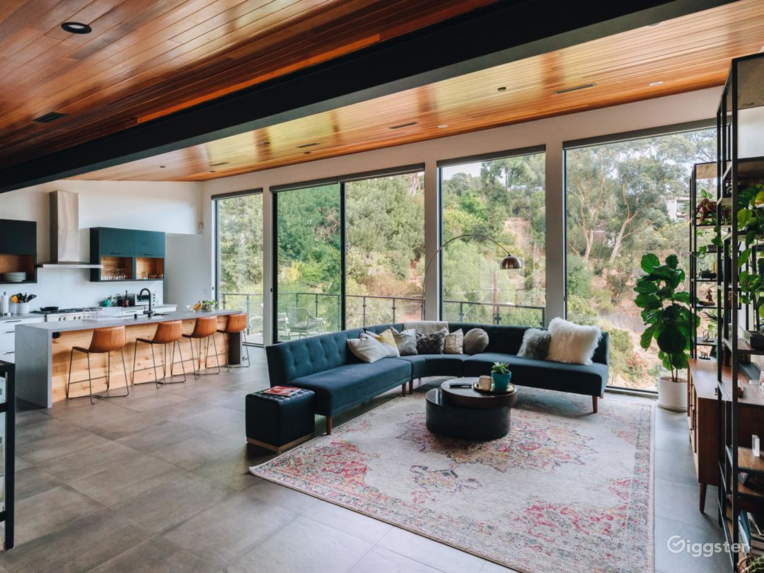 Modern Hillside Home | Mid Century Interior Design Photo 2