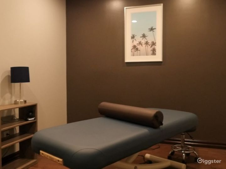 Sports Medicine/Physical Therapy/Modern/Spa Style/ Medical/ Gym Photo 5