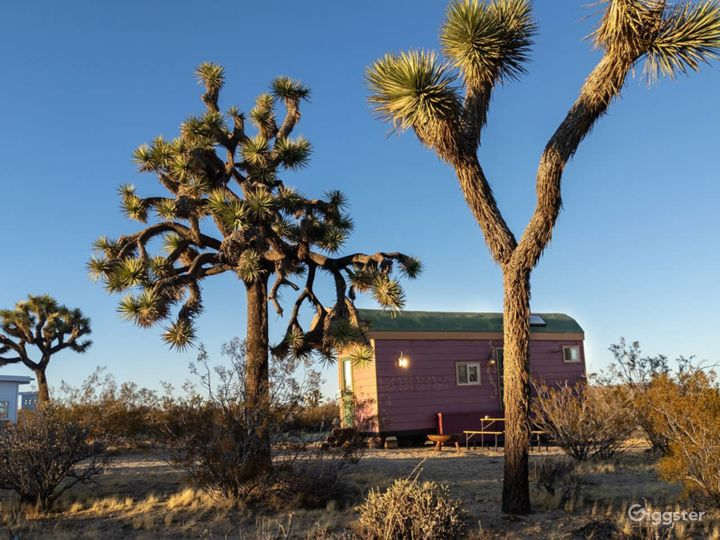 Bohemian Tiny House (Desert)  Secluded/easy Access