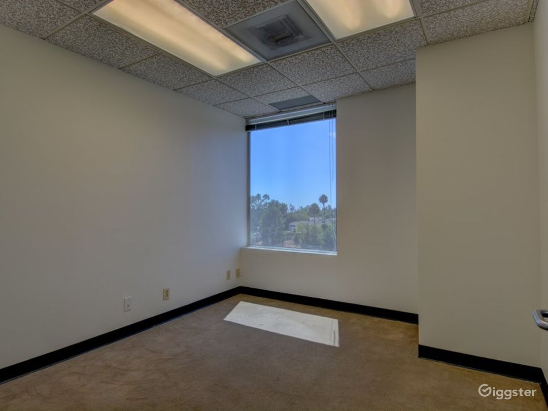The Empty Suite (Office) Photo 1