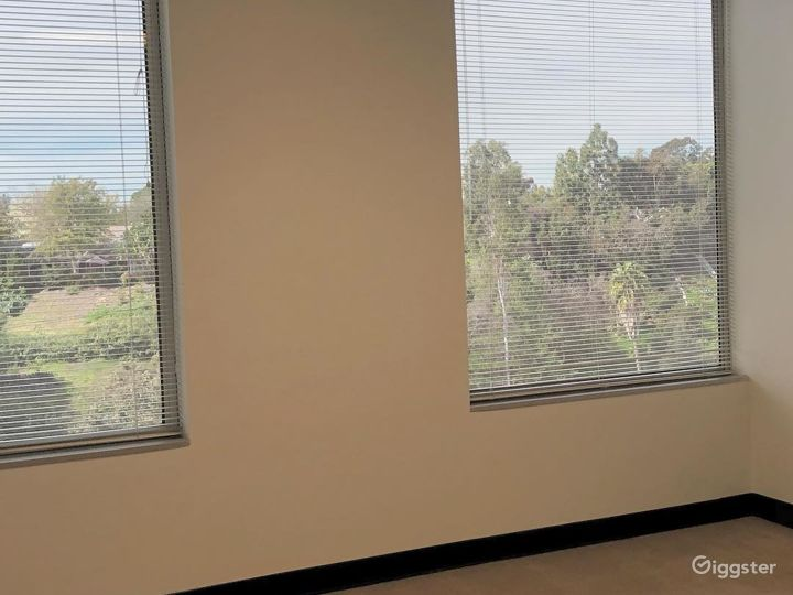 The Empty Suite (Office) Photo 4
