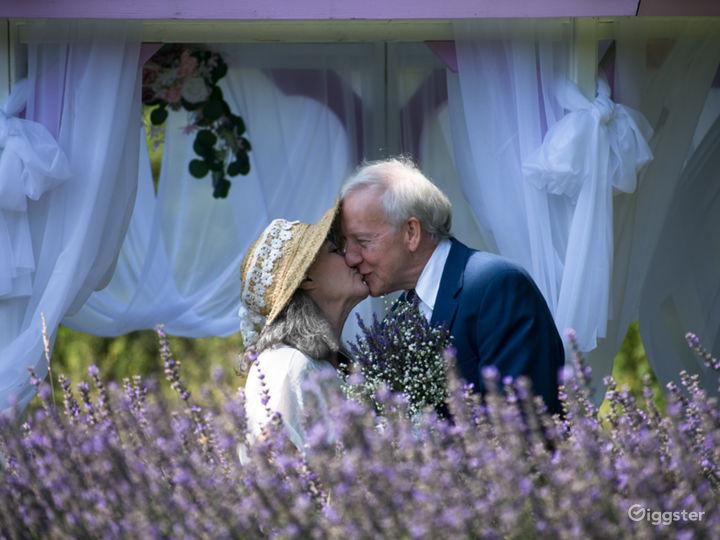 Wedding Photo - Bride and Groom