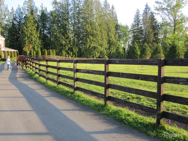 Brick House, Rolling Pastures, Equestrian Estate  Photo 4