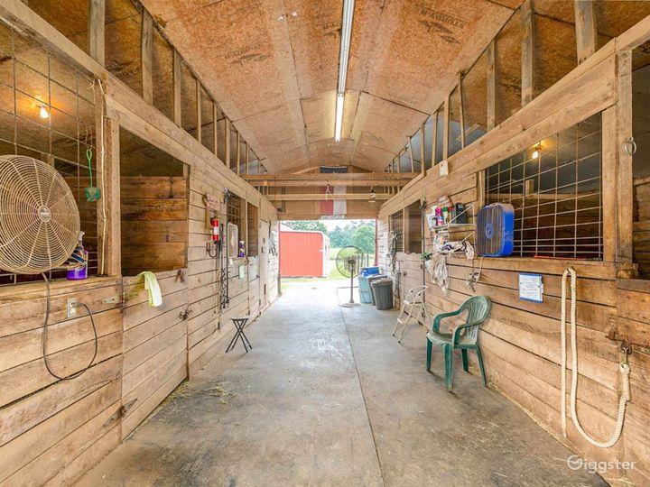 Pristine Horse Farm Photo 2