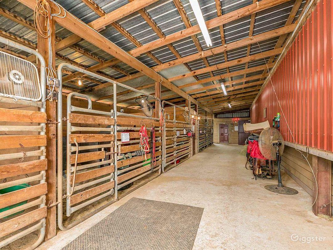 Pristine Horse Farm Photo 1