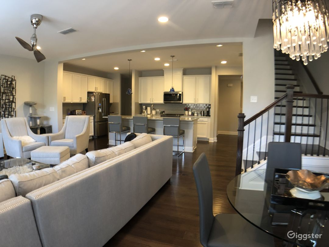 Contemporary Townhouse with Chef's Kitchen Photo 3