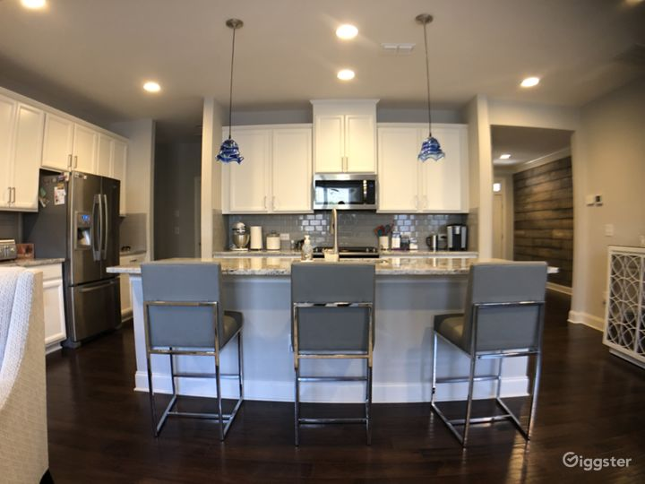 Contemporary Townhouse with Chef's Kitchen Photo 4