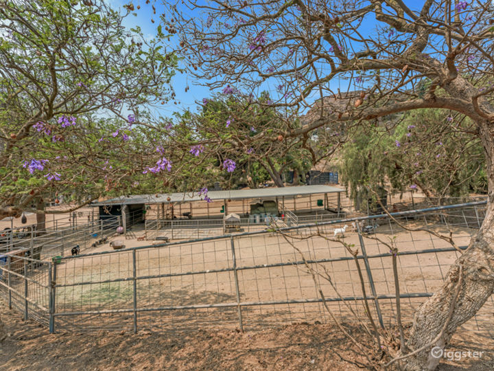 15 acres Malibu ranch with panoramic ocean view Photo 5