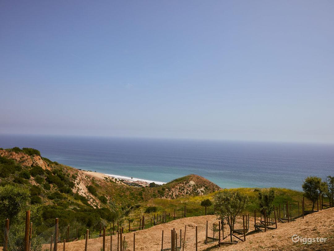 Dreamy Ocean Views above PCH Photo 5