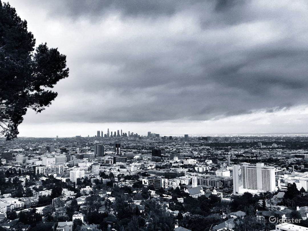 The view of Los Angeles from the rear of the house