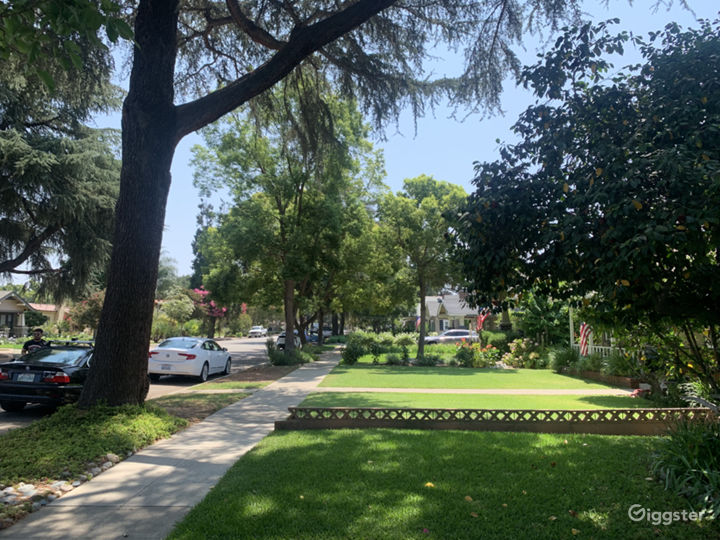 Tree lined street and lovely neighborhood. Just blocks from downtown and beautiful University