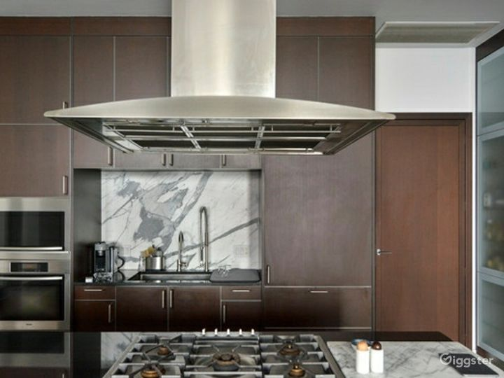 Contemporary NYC apartment: Location 5118 Photo 5