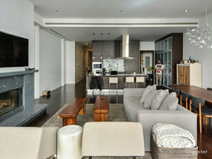 Contemporary NYC apartment: Location 5118 Photo 2
