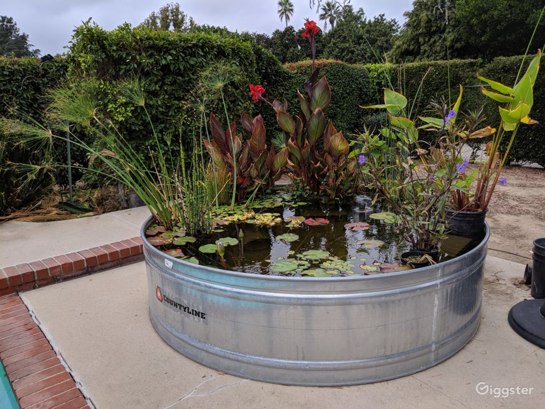 8 ft. Round Livestock trough water garden with plants and koi.