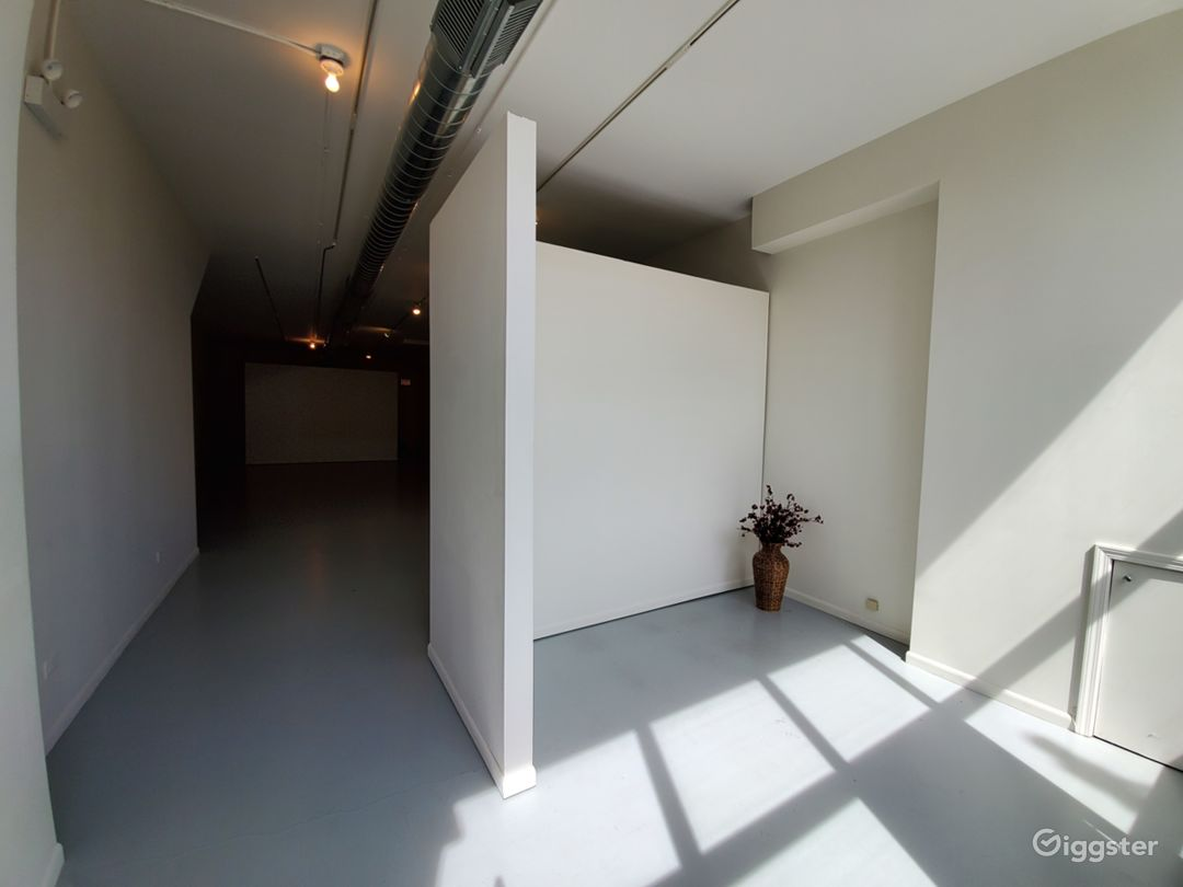 Affordable highceiling open space w/wall on wheels Photo 4