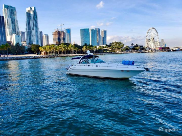 Luxurious 41FT SEA RAY Party Yacht Space Events Photo 4