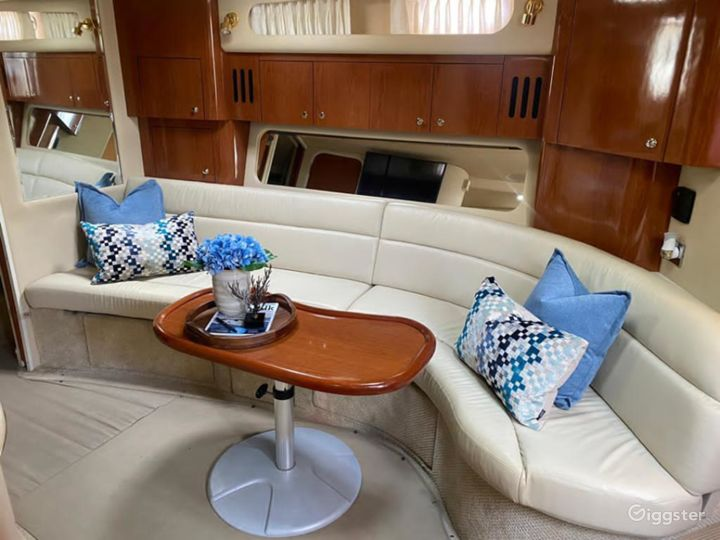 Luxurious 41FT SEA RAY Party Yacht Space Events Photo 3