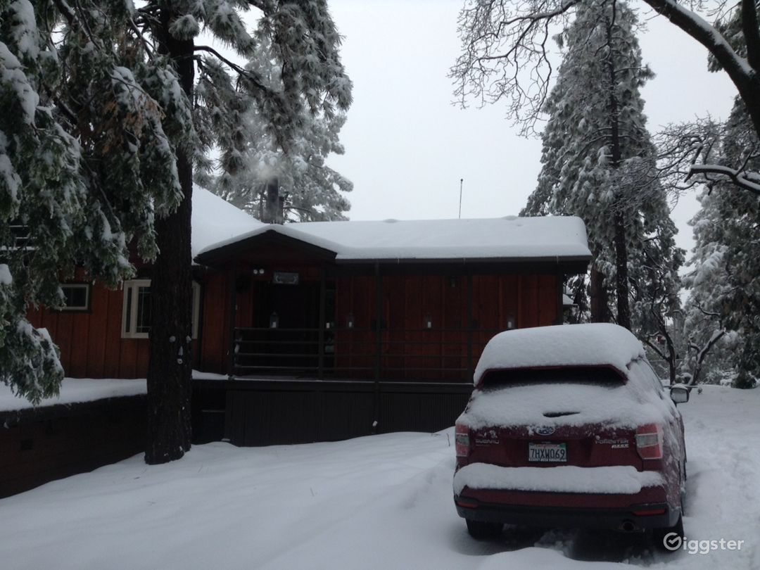 Chalet in the woods Photo 2
