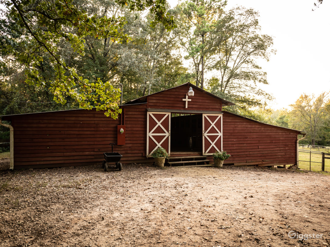 40 Acre Farm - Rustic Farmhouse - Homestead Photo 3