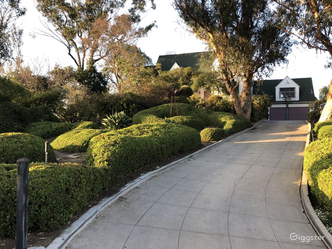 Driveway to the house