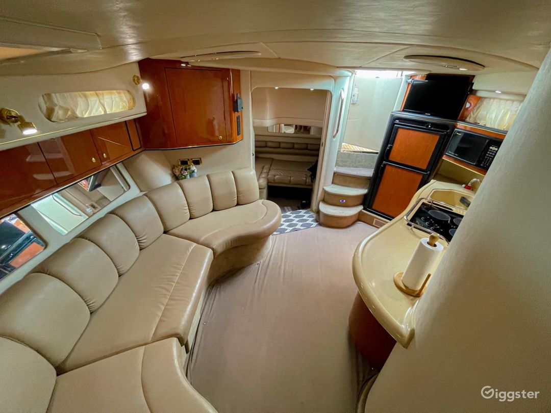 Marvelous 40FT Sea Ray Rosbel Party Yacht Space Events  Photo 1