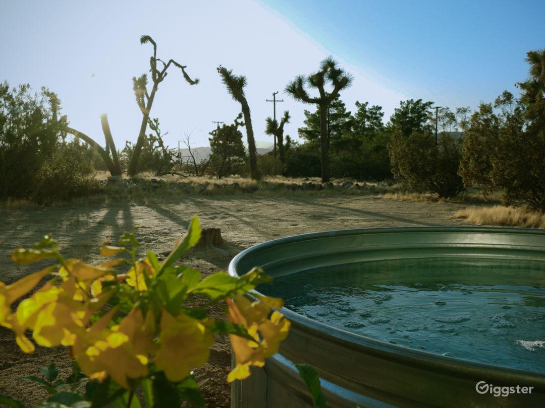 Desert Valley Vista: Mid-Century Ranch Oasis Photo 4