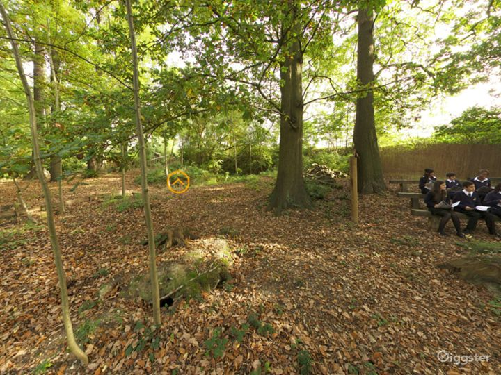 Cozy and Quiet Spinney in London Photo 4