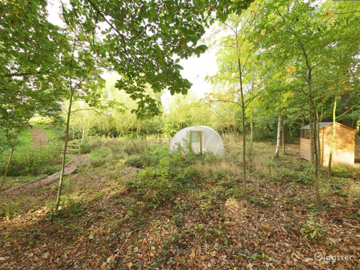 Cozy and Quiet Spinney in London Photo 3