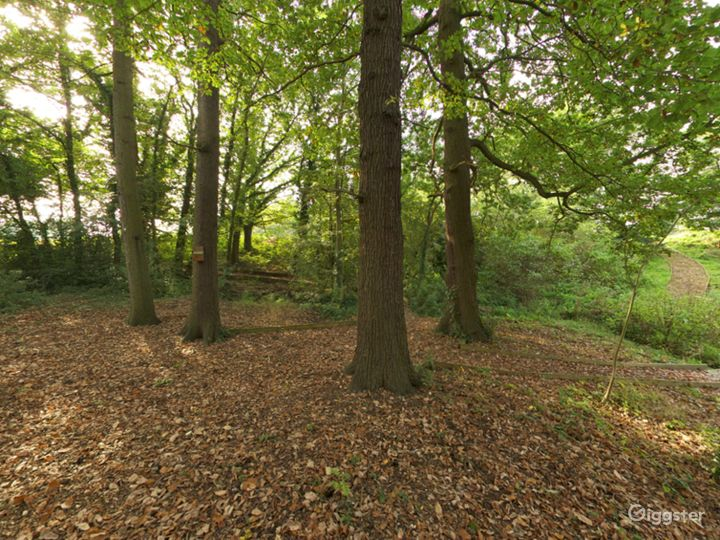 Cozy and Quiet Spinney in London Photo 2