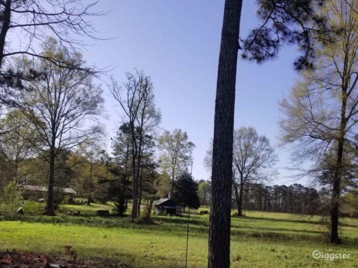 DIRT ROAD FARM Photo 4