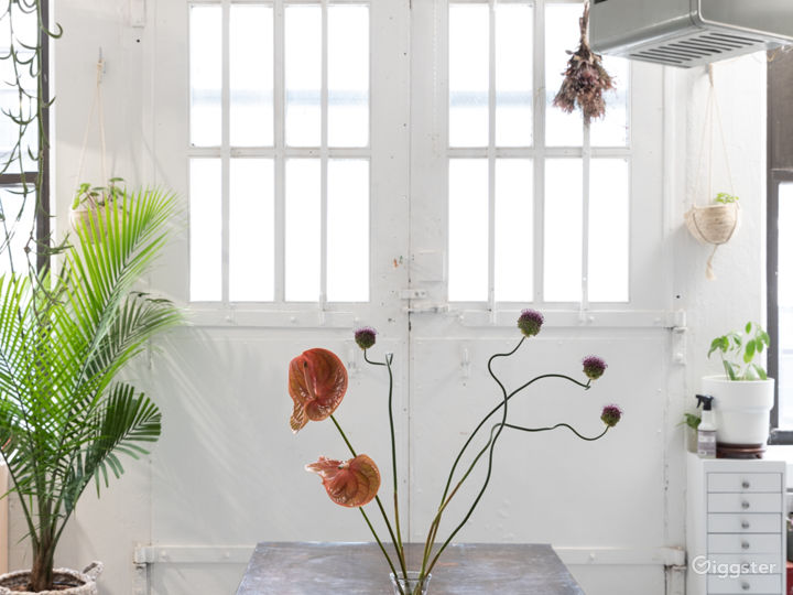 Plant-filled Artist Loft with Props + Surfaces Photo 4