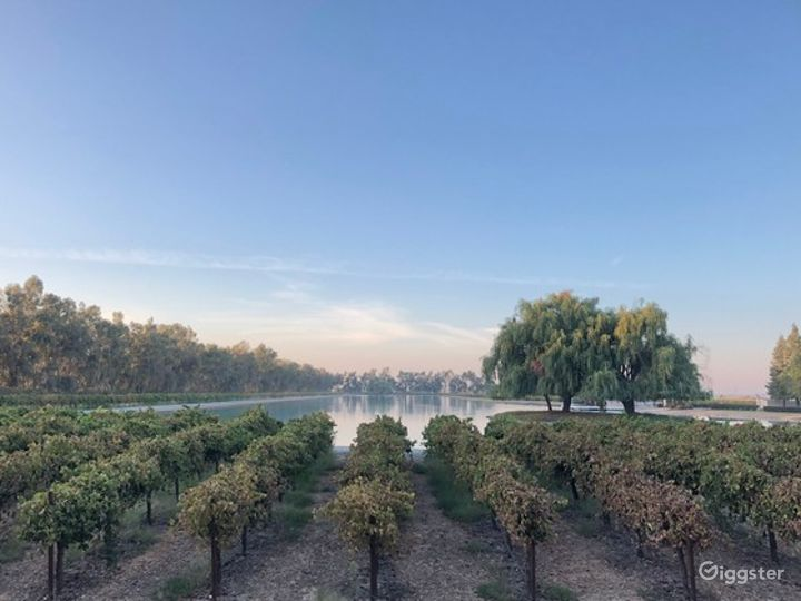 All In One Event Space and Vineyard in  California Photo 4