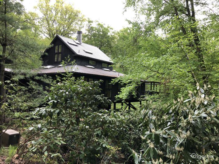 House is hidden among the vegetation