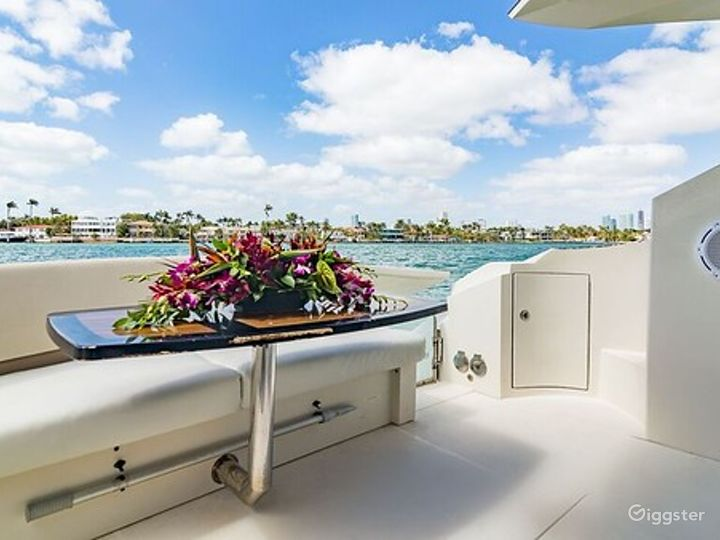 Fashionable 43FT Marquis Party Yacht Space Events Photo 3